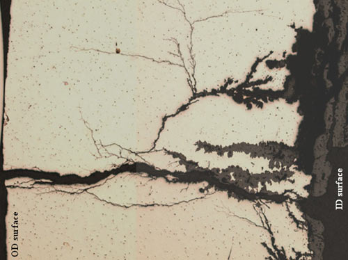 Optical microscopic composite view of the heavily oxidized corrosion penetrations with branch-like features and an extensive network of SCC cracking extending to the OD surface.
