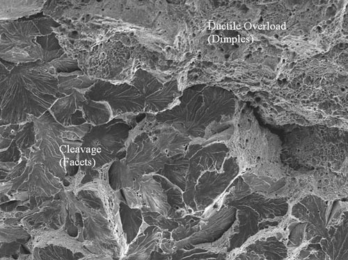 A higher magnification SEM photomicrograph of the transition from ductile overload fracture (dimples) of the weld HAZ to brittle overload (cleavage) fracture of the base metal. The presence of cleavage indicates failure was due to impact loading and indicates a pearlitic (non-quenched and tempered) microstructure.